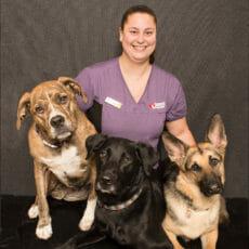 Sarah Toman with three dogs